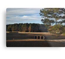 Corporate Landscape Metal Print