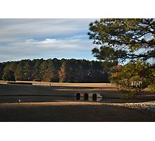 Corporate Landscape Photographic Print