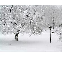 Lamplit Snowfall Photographic Print