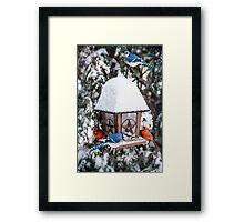 Birds on bird feeder in winter Framed Print