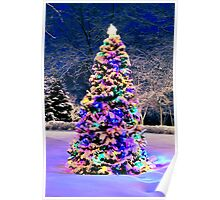 Christmas tree outside Poster