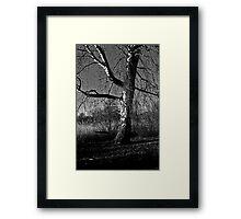 Nostalgic swing Framed Print