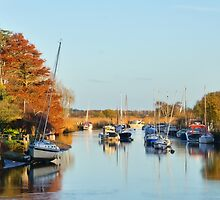 River Frome At Wareham by Susie Peek
