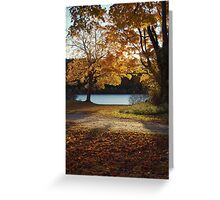 autumn rays Greeting Card