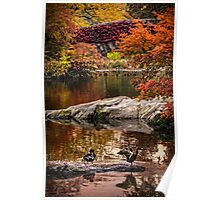 Autumn At The Duck Pond Poster