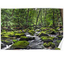 Deep Green River Poster