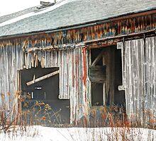 Barn Doors by Geoffrey Coelho