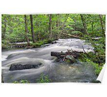 Fall River Rapids No. 2 Poster