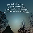 Star light, Star bright by Susan S. Kline