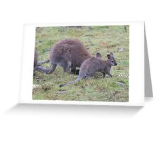 Rosie's Joey on the outside of the pouch Greeting Card