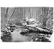 snow in the smokies Poster