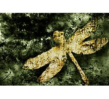 Coheed and Cambria Dragonfly Poster (No Text) Photographic Print