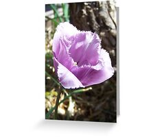 The flower with the fringe Greeting Card