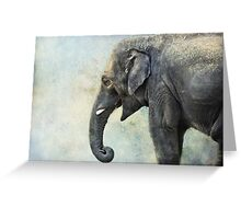 Elephant for Ali Greeting Card