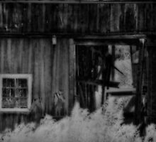 The Old Barn Window by vigor