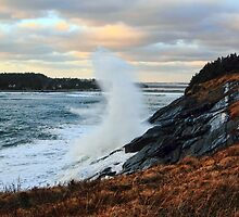 Wave From The Hill at Cape Forchu by Debbie  Roberts