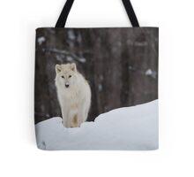 Arctic Wolf - Parc Omega, Quebec Tote Bag