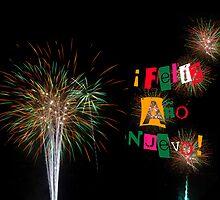 Feliz Ano Nuevo 2014 Colorful Fireworks Card Invitation by Mariannne Campolongo