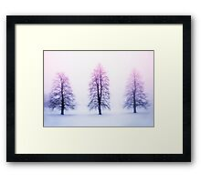 Winter trees in fog at sunrise Framed Print