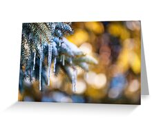 Icicles on fir tree in winter Greeting Card