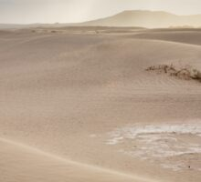 Mesquite Flat Sunrise - Death Valley Sticker