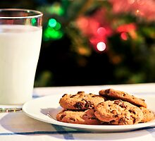 Milk and cookies for Santa by Elena Elisseeva