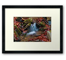 Small waterfall in the forest Framed Print