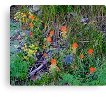 In the Wild Canvas Print