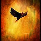 EAGLE SOARING OVER CYPRESS MOUNTAIN ( I PAD CASE) by Doria Fochi