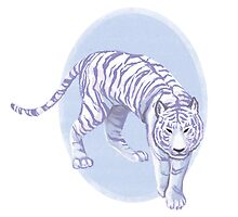 White Tiger by Elizabeth Beck