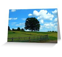 Peacefull Tree on a Summerday Greeting Card