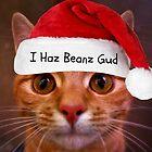 I Haz Beanz Gud by Ladymoose