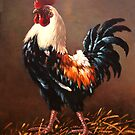 Rooster - the master of the yard by dusanvukovic