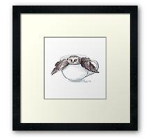 Little Owl in Mug Framed Print