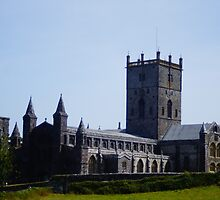2013-07 St Davids Cathedral by Thomas Martin