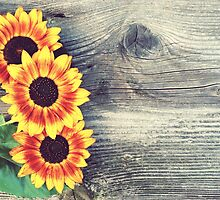 Old boards with sunflowers  by juras