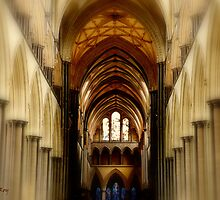 Salisbury Cathedral by LeRoyM