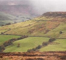 Autumn in Farndale ~ North Yorkshire by patrixpix