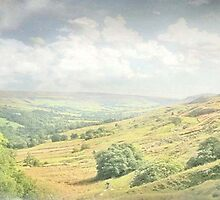 Summer in Farndale ~ North Yorkshire by patrixpix