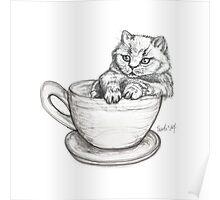 Kitten Mug Poster