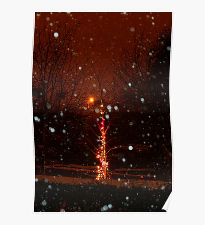 Snow And Lights Aglow Poster