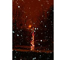 Snow And Lights Aglow Photographic Print