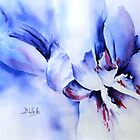 Abstract Iris by Bev  Wells
