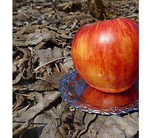 An apple and dead leaves Photographic Print