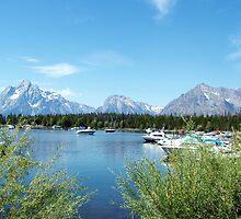 Grand Teton National Park. Landscape photography  by naturematters