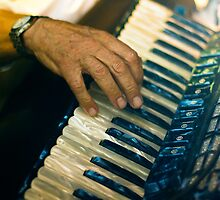 Piano Accordion player in Italy by Samuel Webster