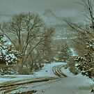 Winter Road by K D Graves Photography