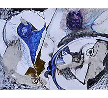kitschen sink series: {4} Photographic Print
