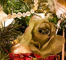 Christmas Flower by PJRPHOTOGRAPHY