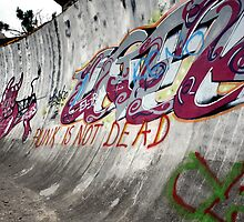 Punk's not dead. Olympic bobsled run, Sarajevo by Bob Ramsak